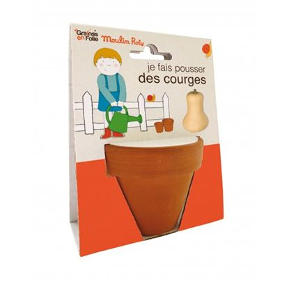 Immagine di vaso semi di zucca bio