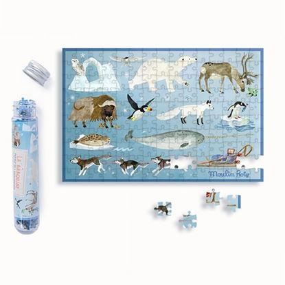 Immagine di puzzle in provetta banchisa pz 150
