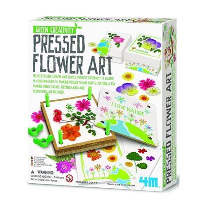 Immagine di arte pressa dei fiori