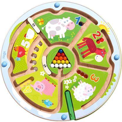 labirinto magnetico haba